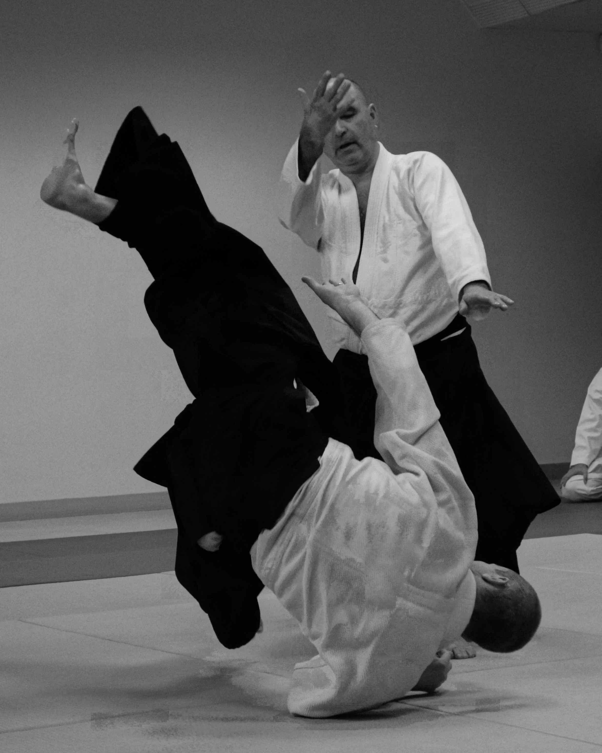 Aikido 002